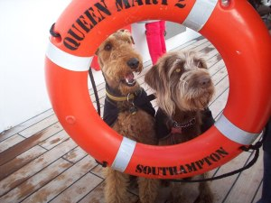 Queen_Mary_dogs_2