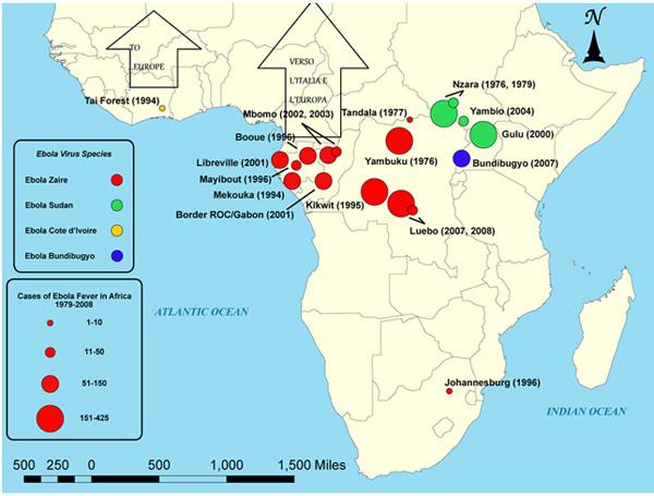 Epidemiologia dell'Ebola